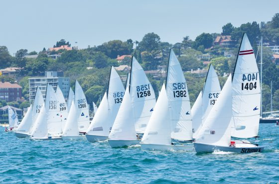 SailSydney_2015_Flying 11 fleet out of Double Bay credit Robin Evans